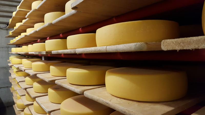 Von Käse, Nitrat, Rohmilch undmehr…