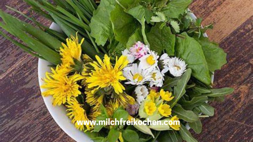 MILCHfrei kochen und essbareWildpflanzen